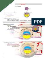 mappa concettuale di embriologia