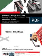 LANXESS_PU_ ANO_2021_Espanhol TEGA RV1