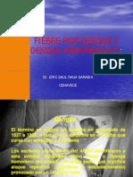 FIEBRE POR DENGUE Y DENGUE HEMORRÁGICO