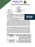 PCA - 2DO - CCSS - 2020