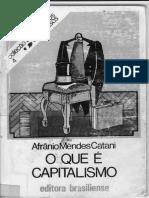 Catani - Unknown - O que é o capitalismo