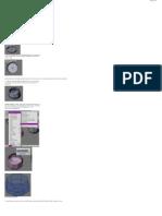 model_items