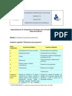 Andamio Cognitivo _Planeación Por Proyectos