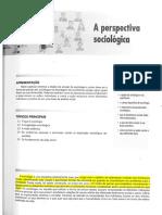 1. DIAS, Reinaldo. a Perspectiva Sociológica. p. 3-17