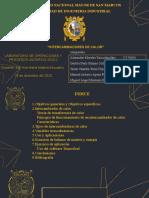 PPT_LAB_OPU - 100%