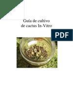 Cultivo de cactus