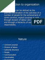 organization stucture