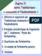 ChapitreIV Triploblastiques_acoelomates