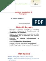 Economie Et Organisation de l'Entreprise