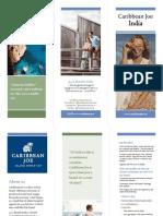 Tri fold brochure cj