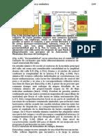 TRADUCCION PAG. 254-274 SALCEDO