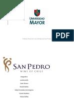 Informe Viña San Pedro
