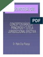 Csjla d Relacion Procesal Dr Pablo Diaz 30092010