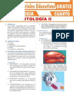 Estructura-del-Citoplasma-para-Cuarto-Grado-de-Secundaria