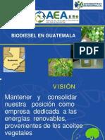 BIODIESEL (JATROPHA, ETC) EN GUATEMALA