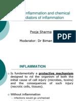 anurag 2 pdf file