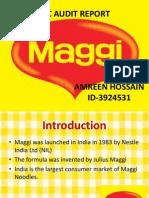 IMC-MAGGI