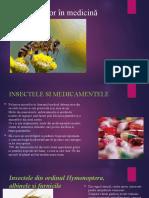 Rolul Insectelor În Medicină