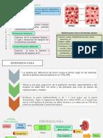 Anemia Ferropenicaa