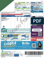 factura_2078390693