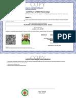 Pelaksana Jalan 028 ( Arni )