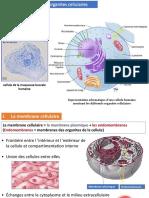 Biologie Cellulaire Et Biochimie Structural 2