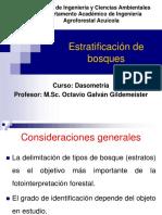 11b Estratificación