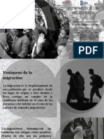 FENOMENO DE MIGRACION