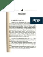 4.Inflamatia