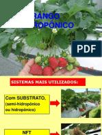 Fresa Hidroponico