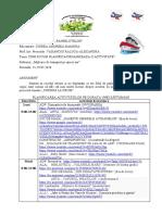 Planificare 25-29.05.2020