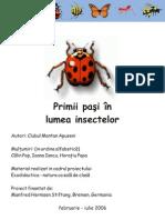 Primii pasi in lumea insectelor pt copii