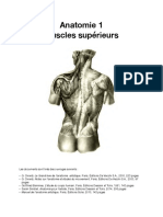 Anatomie-1-muscles-supérieurs_lores