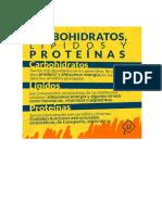 Carbohidrato Lípido Proteína