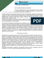 atividade_pratica_anelideos