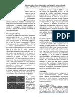 Microencapsulación de licopeno de las cáscaras de tomate por complejo la coacción y la liofilización-Evidencias en el perfil fitoquímico, estabilidad y aplicaciones alimentarias