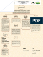 mapa conceptual dencys