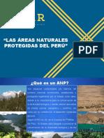 Areas Naturales Protegidas. Pptx