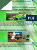 Ecosistemas Del Ecuador 8vo A