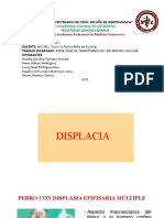 CASOS DE PATO...... (1)