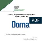 Proiect Dorna TPA