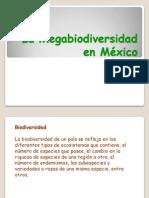 S5-Megabiodiversidad