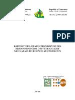 Rapport Evaluation Besoins SONU