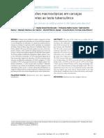 Frequência de lesões macroscópicas em carcaças de bovinos reagentes ao teste tuberculínico