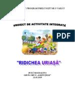 p._d._comisie_ridichea