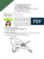 Guía de Artistica 5