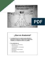 Introduccion Anatomia Biol