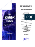 THE BIGGER PICTURE. Beyond the Illusion of Matter. Johan Oldenkamp (1)