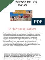 La Despensa de Los Incas Tania