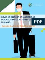Covid19 - Especial Laboral-DICIEMBRE 2020